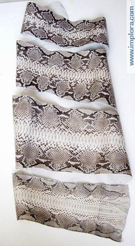Snakeskins Implora Natural Python Snakeskin Belly