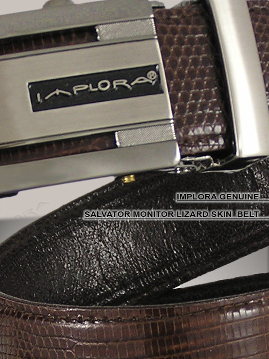 Implora Brown Salvator Monitor Lizard Belt