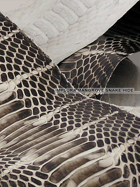 Implora Natural Mangrove Snake Skin Belly