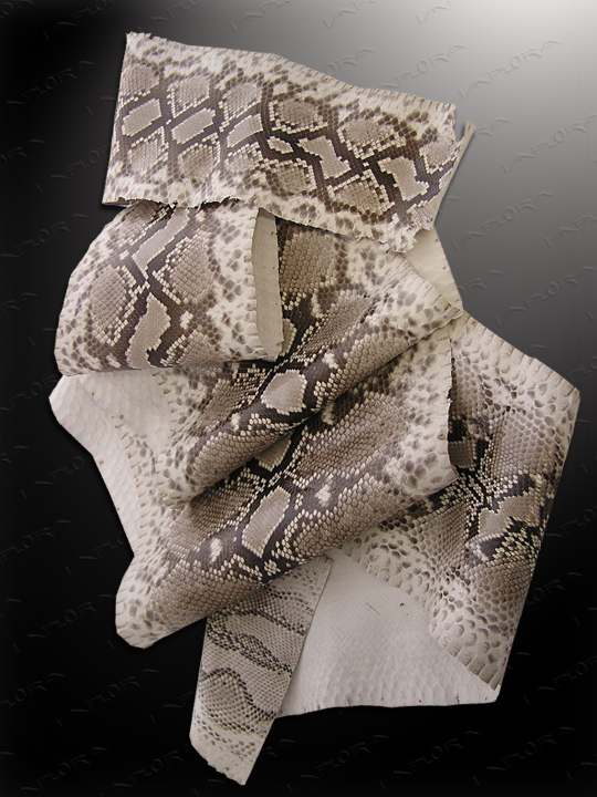 Snakeskins Implora Natural Python Snakeskin Large