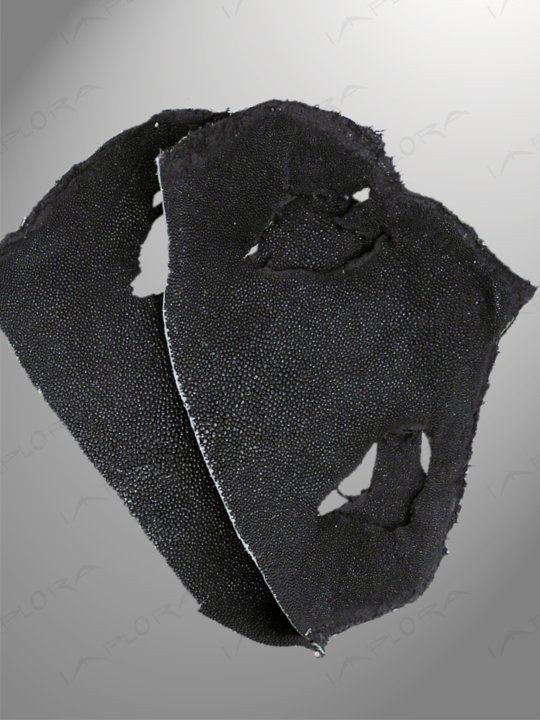 Stingray Leathers Black Genuine Stingray Top Part Scraps (2 pcs)