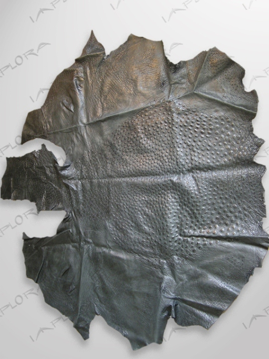 Ostrich Leathers Implora Ostrich Skin, Black, 63x64in