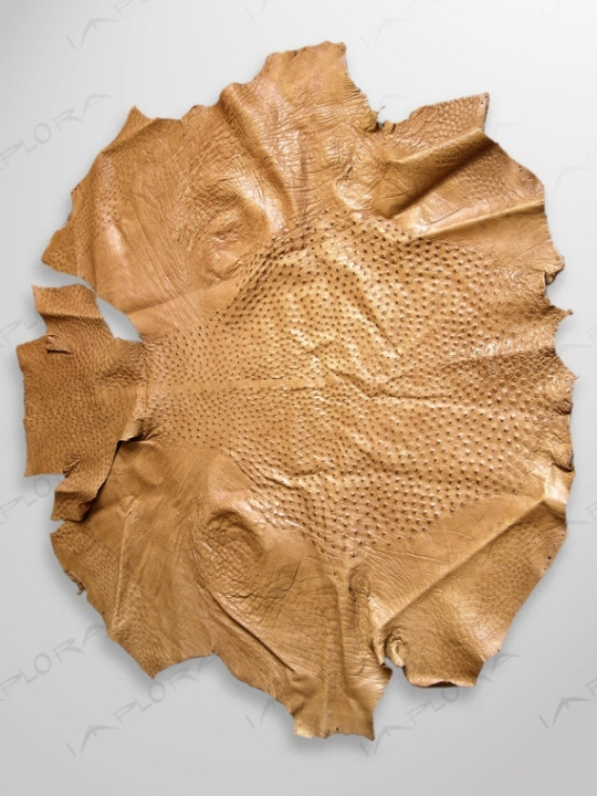 Ostrich Leathers Implora Ostrich Skin, Tan, 50x46 inches