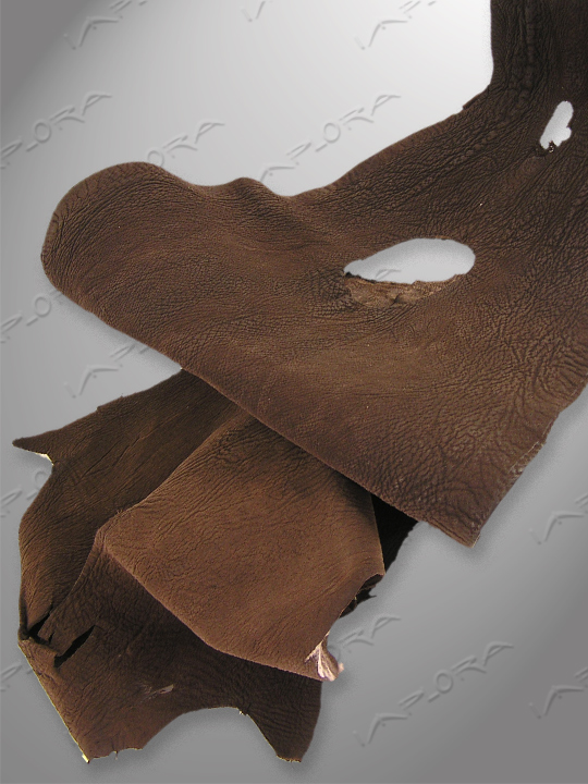 Leather Implora Brown Shark Skin Leather Hide