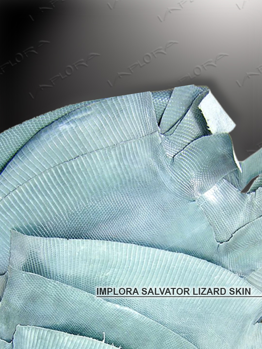 Implora Green Monitor Lizard Skin