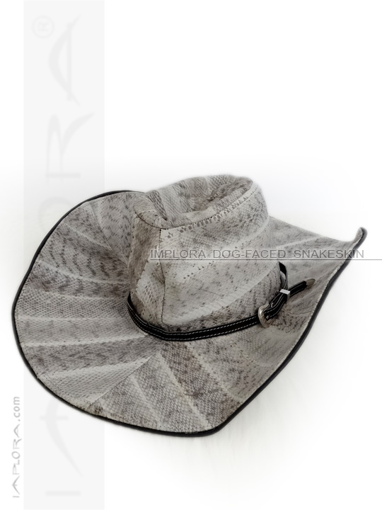 Snakeskin Cowboy Hat Dog-Faced Snake Home Decor